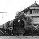 Essendon History